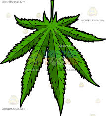 a beautiful cannabis leaf cartoon clipart vector toons