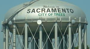 petition bring back our city of trees change org