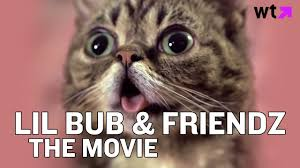 Lil Bub Meme - lil bub friendz the movie what s trending now youtube