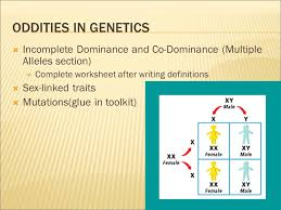 why are you the way you are worddefinition genetics heredity