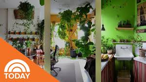 york city apartment with more than 600 plants today youtube