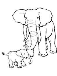 Coloriage Elephant  page 2