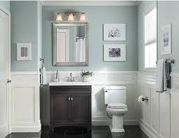 hide toiletries tastefully in a dark vanity a cool pale blue