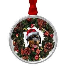rottweiler puppy ornaments keepsake ornaments zazzle