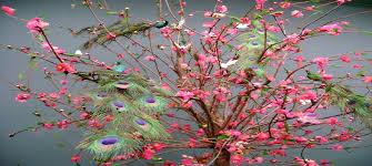 Flower And Bird - bird and flower east languages literatures