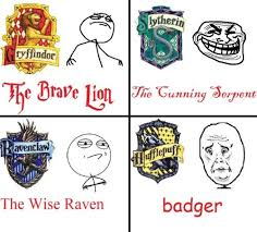 Harry Potter House Meme - hogwarts houses