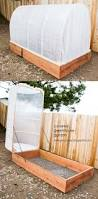 best 25 winter greenhouse ideas on pinterest winter vegetables