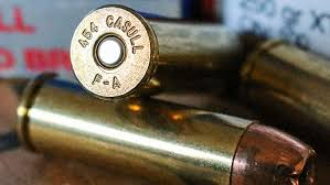 Barnes Xpb American Hunter Behind The Bullet 454 Casull