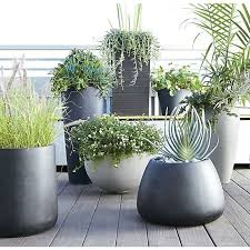 Tall Plastic Planters by Best 25 Tall Planters Ideas On Pinterest Outdoor Potted Plants