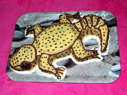 how to make a leopard gecko cake youtube