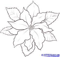 how to draw a poinsettia step by step flowers pop culture free