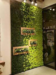 best 25 moss wall ideas on pinterest moss wall art moss art
