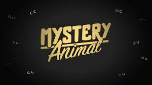 Home Design Game Questions by Github Googlecreativelab Mystery Animal A New Spin On The