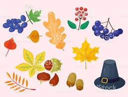 colorful icons for thanksgiving day vector turkey