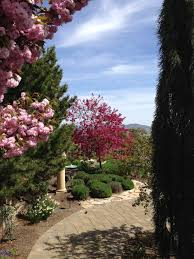 Residential Landscaping Services by Residential Landscaping Services In Reno U0026 Sparks Moana Nursery