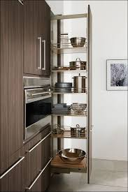 Narrow Pull Out Spice Rack Dining Room Marvelous Pantry Pullouts Narrow Spice Rack Kitchen