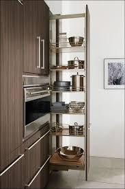 Under Cabinet Sliding Shelves Dining Room Marvelous Hafele Pull Out Spice Rack Spice Rack