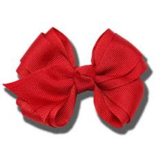 large hair on cus large hair bow book store