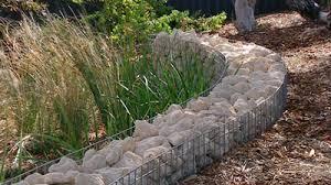 gardening australia fact sheet front garden progress