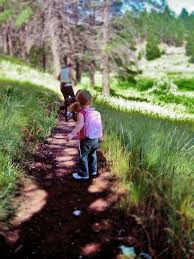 Arizona traveling with toddlers images List of things to do with young children in flagstaff az this jpg