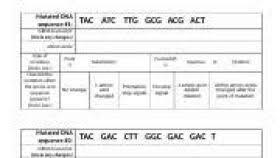 identifying mutations worksheet answer key worksheets aquatechnics biz