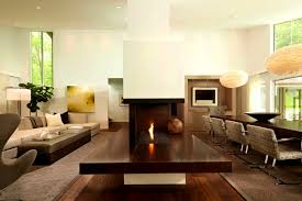 furniture awesome design century modern fireplace insert style