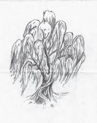 best 25 willow tree tattoos ideas on pinterest weeping willow