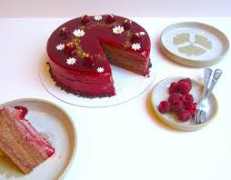 chocolate raspberry entremet