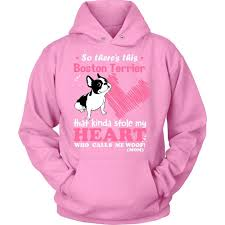 Boston Terrier Flag This Boston Terrier Kinda Stole My Heart T Shirt Mostly Paws
