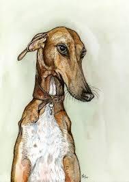afghan hound art emporium the 133 best images about dog on pinterest dog wallpaper