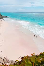 best 25 crane hotel barbados ideas on pinterest dream vacation