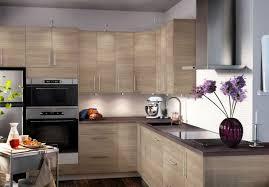 cuisine hetre clair idée relooking cuisine cuisine ikea hêtre plan de travail marron