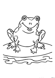 frog coloring pictures eliolera