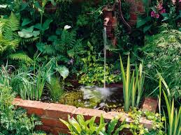 wall fountain with pond and water garden plants relaxing garden