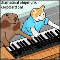 Keyboard Cat Meme - keyboard cat image gallery sorted by oldest know your meme