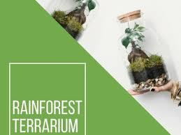 rainforest terrarium making workshop in northcote