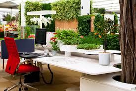 best desk plants hostgarcia