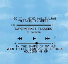 ed sheeran lyrics quotes blue flowers lyrics supermarket flowers ed sheeran lyrics pinterest