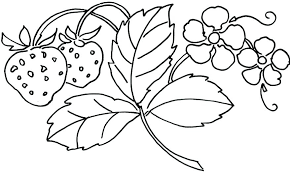 printable spring flowers flower coloring pages printable free bcprights org