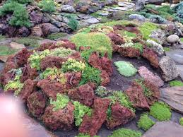 Lava Rock Garden A Rock Garden That Will Amaze You Johanne Yakula From Times Past