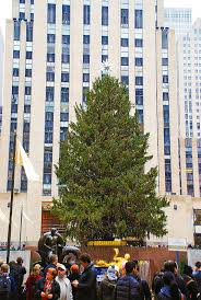 10 things to do in nyc in december