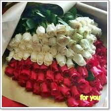 the most beautiful flowers for you home facebook