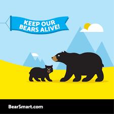 bear smart get bear smart society welcome