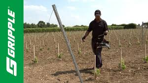 trellising with gripple plus product focus youtube