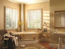 window blind marvelous window film blinds bathroom frosted glass
