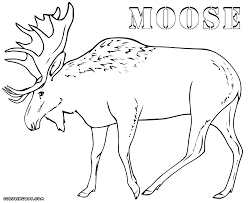 moose coloring sheet with wisacare com