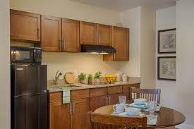 studio apartment kitchen ideas cabinet kitchen small apartment livingurbanscape org