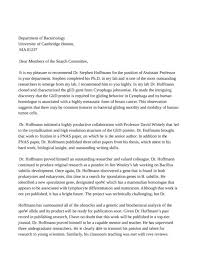 writing an effective academic recommendation letter and how to