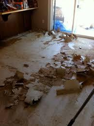 Removing Old Laminate Flooring Brown Paper Bag Flooring U2026updates U2013 Holly U0027s Corner