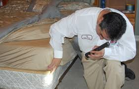 Will Heat Kill Bed Bugs Austin Bed Bug Extermination And Treatment Abc Home U0026 Commercial